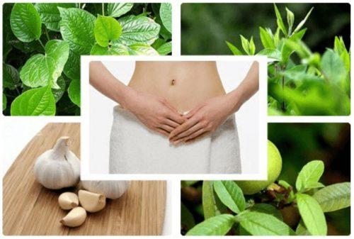 5 cách trị nấm âm đạo tại nhà bằng nguyên liệu tự nhiên