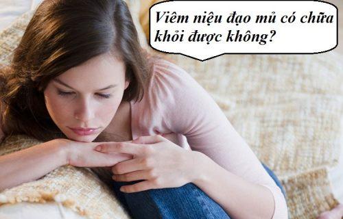 Viêm niệu đạo mủ ở nữ giới có chữa khỏi được không?